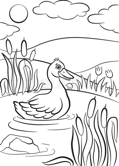 coloring pages ducks in a pond coloring pages little cute duck swims on the pond it s
