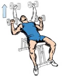 incline db bench press incline dumbbell bench press for chest workout