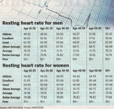 average sitting rates what should one s rate be the casual observer
