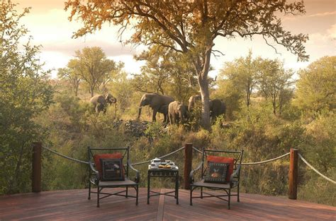 things to do in joburg ask nanima 3 day kruger national park luxury safari from johannesburg