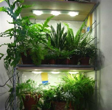 indoor plants  led lighting grow lighting