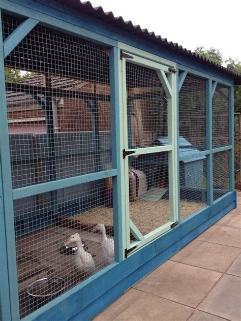 best 25 duck pens ideas on duck coop duck