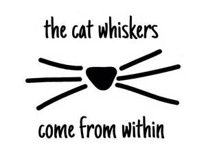 Legacycas portfolio the cat whiskers come from within