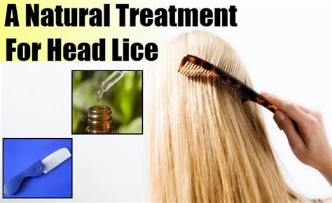 lice remedies and hair lice home treatment