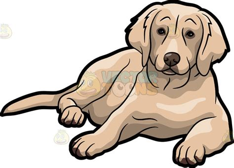 golden retriever clip an adorable golden retriever pet vector clip
