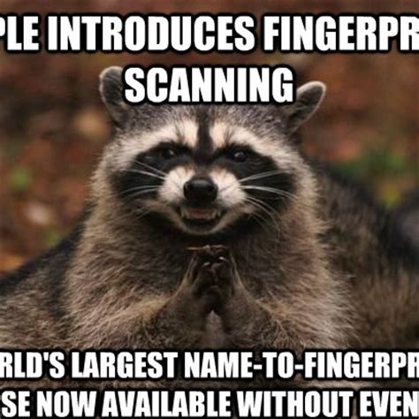 Raccoon Memes - evil plotting raccoon meme works for apple s finger print