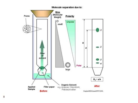 How To Make Chromatography Paper - paper chromatography images