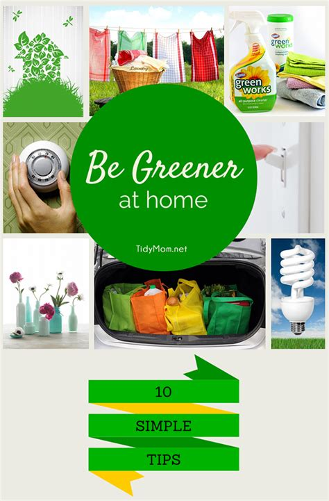 going green in your home going green in your home 10 simple eco friendly tips to