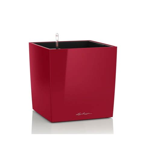 lechuza vasi vaso cube 50 lechuza set completo
