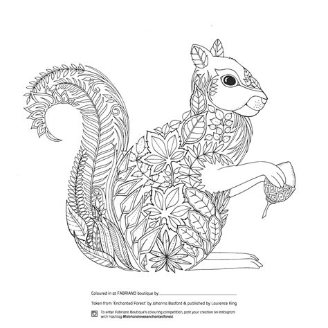 coloring pages for adults enchanted enchanted forest colouring competition at fabriano