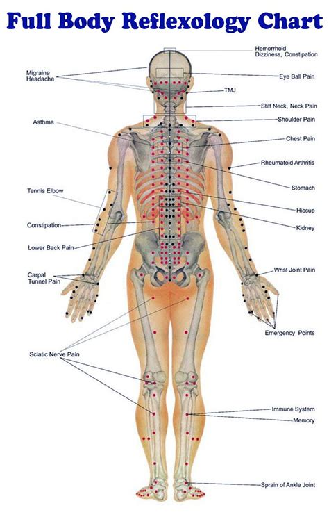 pressure points hair growth 25 best ideas about acupressure chart on pinterest