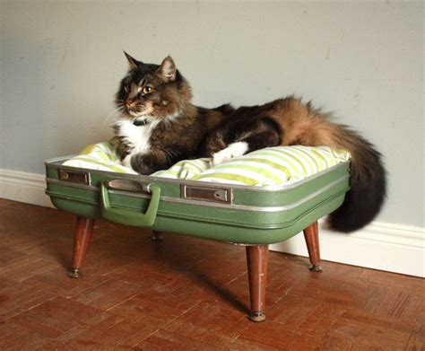 diy cat bed cozy cargo suitcase pet bed green and brown upcycled