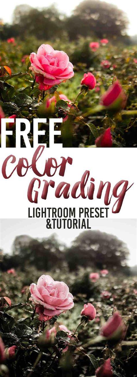 color grading tutorial best 25 color grading ideas on color