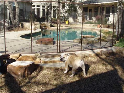 backyard fence for dogs temporary fence for dogs temporary fencing for dogs