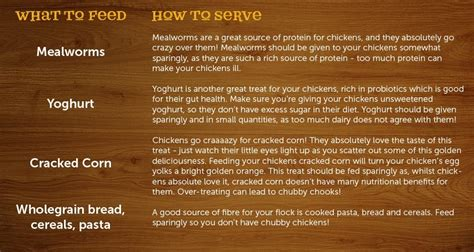 what to feed backyard chickens helpful backyard poultry tips a random posting