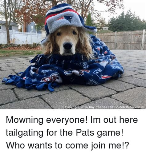 Come With Me Tailgate Ae The Look by 25 Best Memes About Tailgater Tailgater Memes