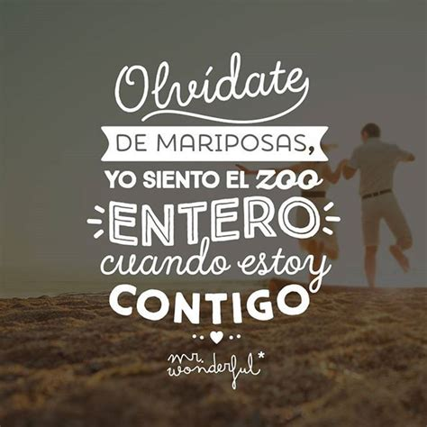fotos de amor bonitas tumblr mr wonderful frases de mr wonderful pinterest