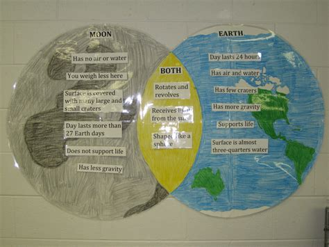 weather and climate venn diagram category interactive student notebooks