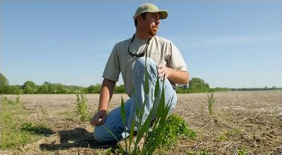William Neuman Et Andrew Pollack Les Agriculteurs Doivent