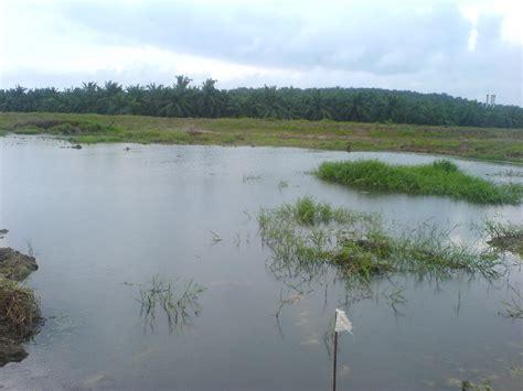 Joran Pancing Sungai Renjer Sungai