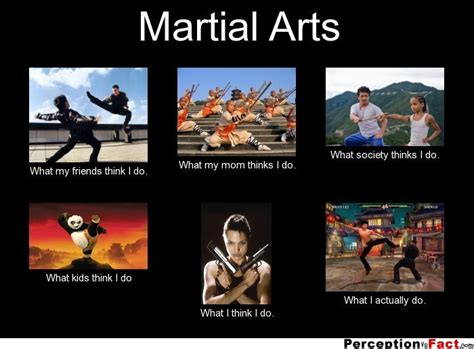 Martial Arts Memes - martial arts what people think i do what i really do
