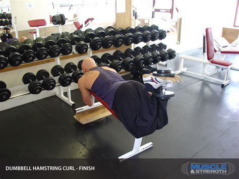 hamstring curl bench dumbbell hamstring curl video exercise guide tips