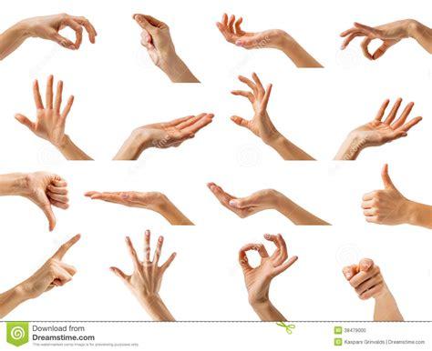 imagenes de i love you con las manos manos de las mujeres que muestran diversos gestos foto de