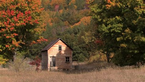 Uneeda Shed by Oneida Definition Meaning