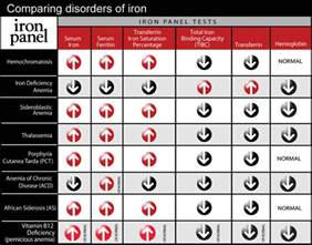 how to check iron levels at home anemia in adults nyp family med