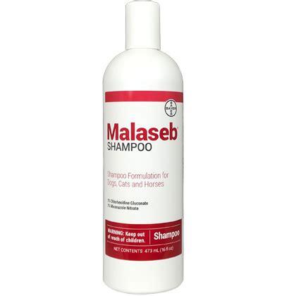 antifungal for dogs malaseb antifungal pet shoo 1800petmeds