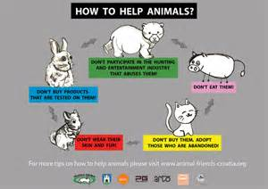 afc 10 19 12 how to help animals