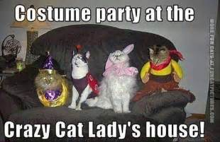 Halloween Party Meme - crazy cat lady s costume party fun cat pictures