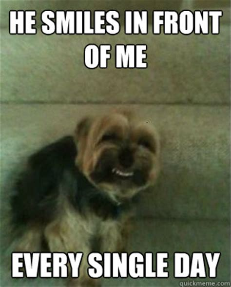 Annoyed Dog Meme - he smiles in front of me every single day annoying dog