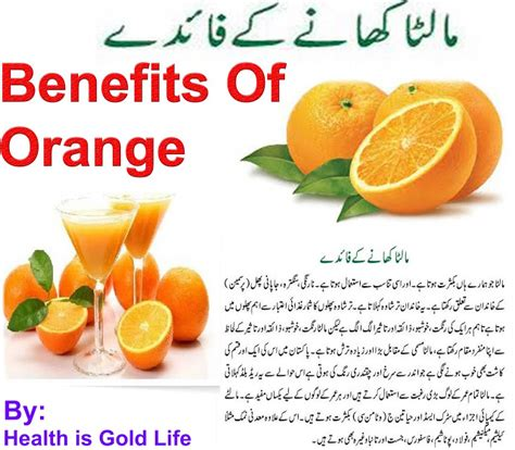 Orange For Health And by Benefits Of Orange For Health In Urdu Goldlife