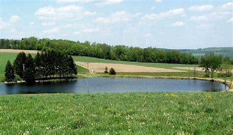 backyard swimming pools  small ponds beautiful