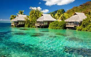Paradise Tiki Hut Tiki Huts Wallpaper Wallpapers
