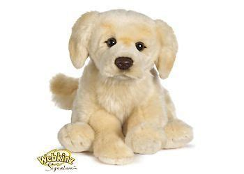 webkinz golden retriever names 17 best images about webkinz signatures on portuguese water toys and