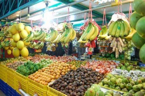 Makanan Dan Vitamin Ayam Petelur usaha jualan buah learn business