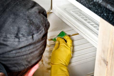 kühlschrank stinkt k 252 hlschrank stinkt deptis gt inspirierendes design