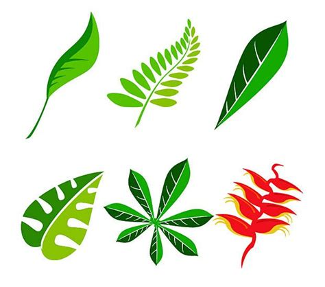 vector leaf tutorial vector jungle leaf vector graphics free vectors