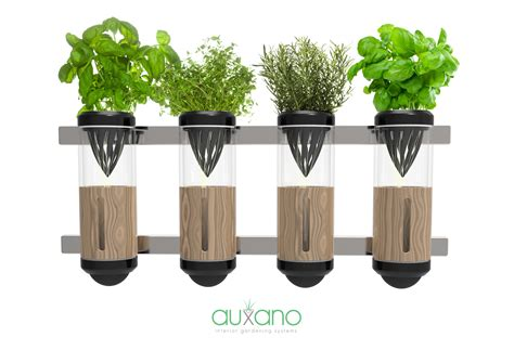 hydroponic indoor herb garden auxano hydroponic vegetable and herb grower by philip
