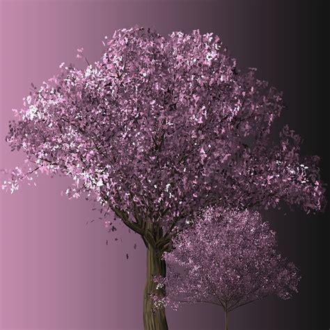 new year cherry blossom trees free photo cherry blossom tree cherry blossom free