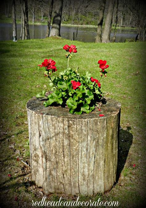 Stump Planter by Diy Stump Planter Can Decorate