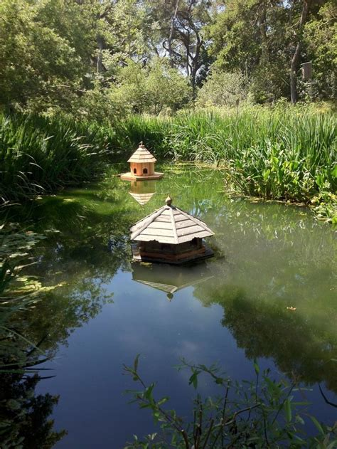 Floating Duck House by Duck Houses Duck Houses