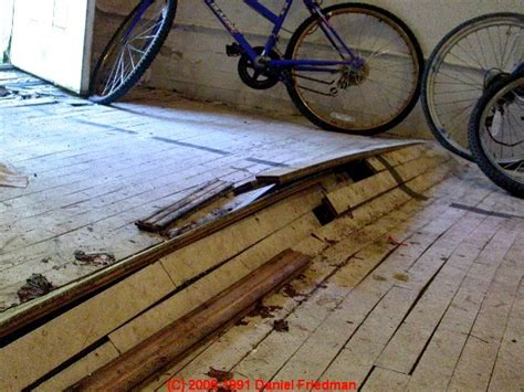 wood floor types damage diagnosis repair damaged wood