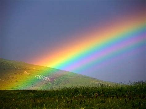 Light Up The Sky Band by In The Mystical World Of A Rainbow Scientia