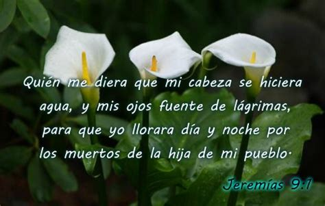 58 best pesame y luto images on pinterest condolences grief and angel