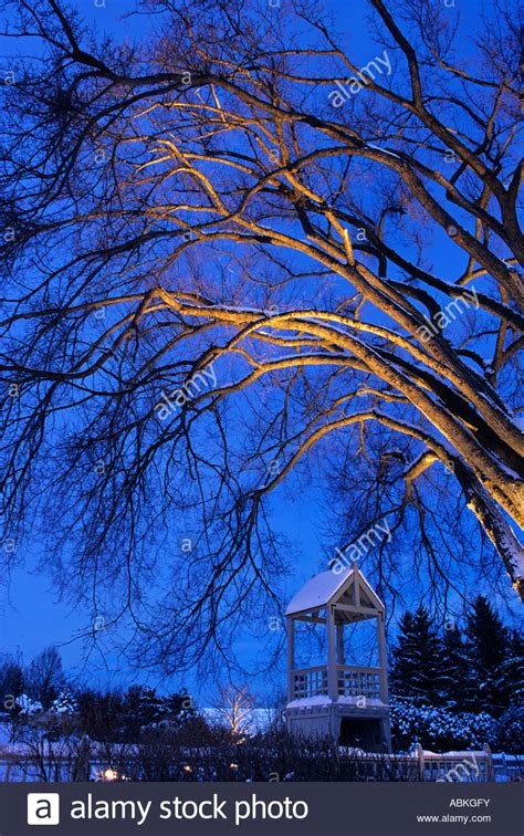Mn Landscape Arboretum In Winter Winter Lights Display At The Of Minnesota