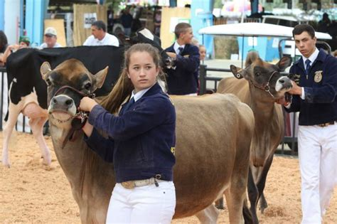 dairy farmers milks hq deal for 18m in kansas incentives kansas