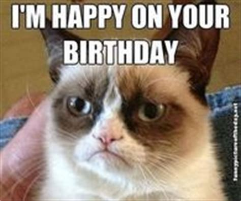 Grumpy Cat Happy Birthday Meme - funny happy birthday quotes pictures photos images and